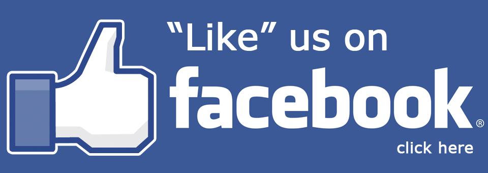 Buzinga Facebook Likes